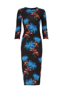 Hewes Black Saihana Dress by Diane von Furstenberg