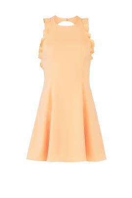 Sherbert Ellaria Dress by Jay Godfrey