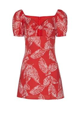 Leaf Print Tie Front Mini Dress by J.O.A.