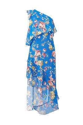 Blue Floral Maxi by Slate & Willow
