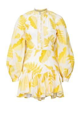 Bastia Dress by Acler