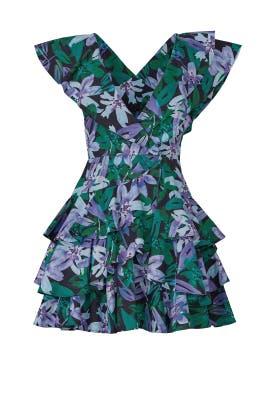 Maisie Dress by Marissa Webb