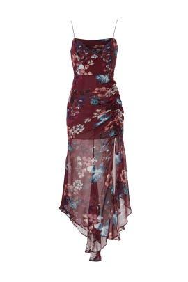 Burgundy Floral Dress by Nicholas