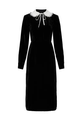 Black Collared Velvet Dress by Sweet Baby Jamie