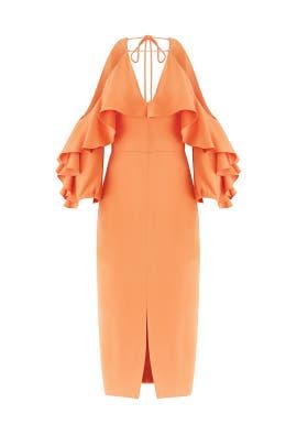 Papaya Aura Dress by Cushnie