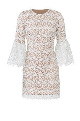 Bell Sleeve Lace Dress by Dress The Population