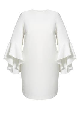 Ivory Flounce Sleeve Shift Dress by ELOQUII