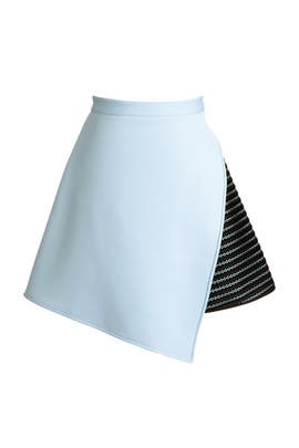 Lawrence Skirt by David Koma