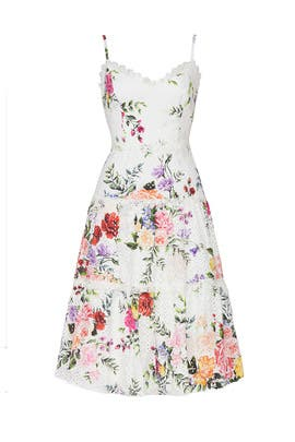 Floral Eyelet Trim Dress by Marchesa Notte