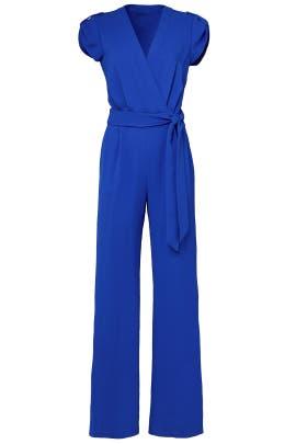 Blue Purdy Jumpsuit by Diane von Furstenberg