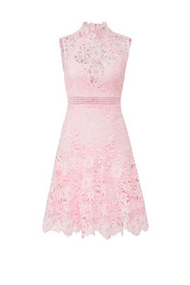 Elise Lace Dress by BARDOT