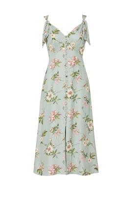 Sleeveless Lita Tie Dress by Rebecca Taylor