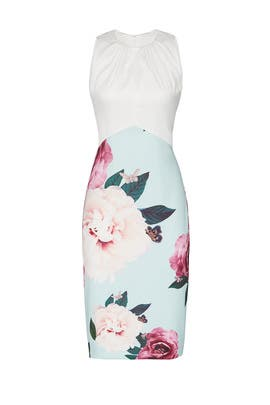 Annile Dress by Ted Baker London
