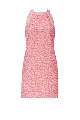 Pink Floral Shift Dress by Hutch