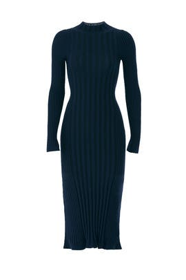 Blue Fig Merino Dress by VEDA