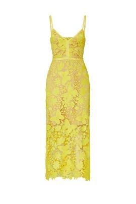 Peony Dress by CATHERINE DEANE