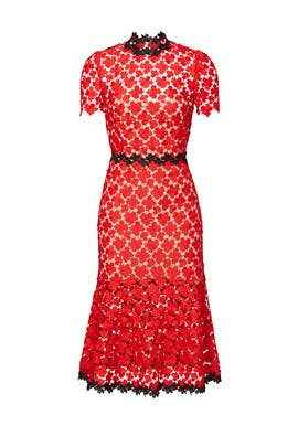 406f44fd43d Cherry Lace Midi Dress by Jill Jill Stuart for  70 -  93