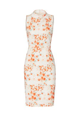 Printed Corrine Sheath by Black Halo