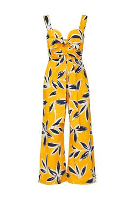 Brusa Jumpsuit by Alexis