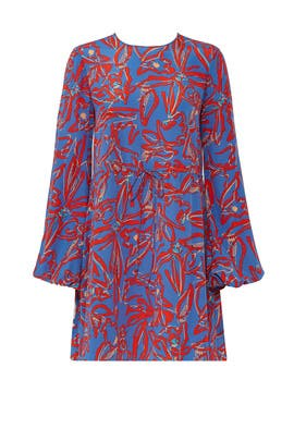 Elsden Printed Dress by Diane von Furstenberg