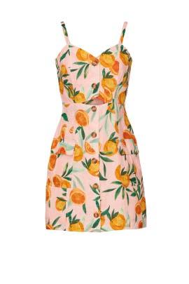 Adara Dress by Parker