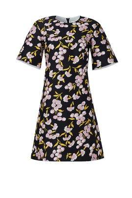 Black Floral Printed Dress by Marni