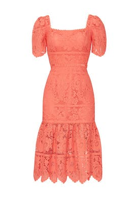 Louisa Midi Dress by Saylor