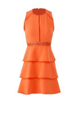 b71b4b651c4 Nectarine Vanessa Dress by Rachel Zoe for  60 -  83