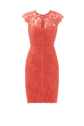 Grapefruit Spritz Sheath by ML Monique Lhuillier