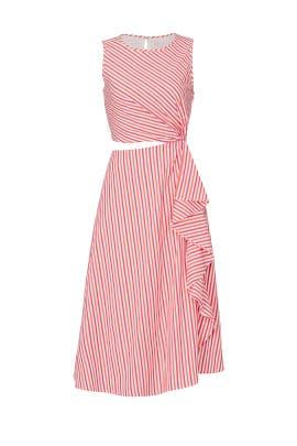 Samara Dress by J.Crew