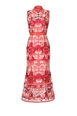 Erfly Lace Midi Dress By Marchesa Notte