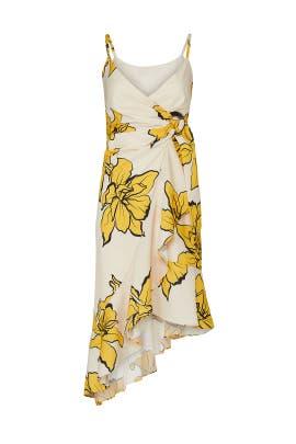 Mercer Dress by Hutch