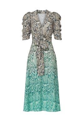Ellis Ombre Snake Print Dress by AFRM