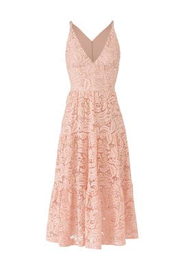 Rose Petal Alicia Dress by Dress The Population