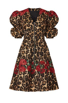 Cheetah Shayla Dress by Autumn Adeigbo