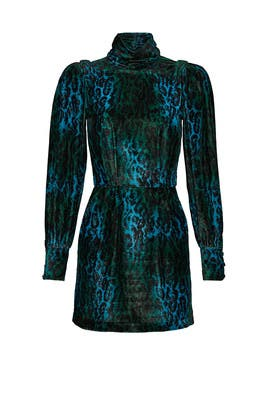 Velvet Leopard Gwen Dress by Ronny Kobo