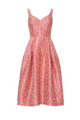 Pink Sweetheart Dress by Jill Jill Stuart