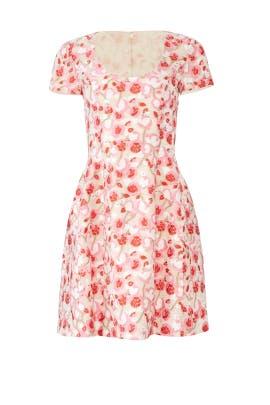 Pink Floral Dress by Prabal Gurung