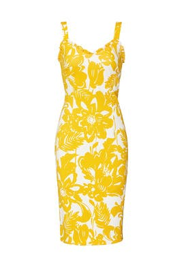 Zile Dress by Trina Turk