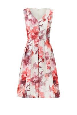 Rose Notes Dress by Carmen Marc Valvo