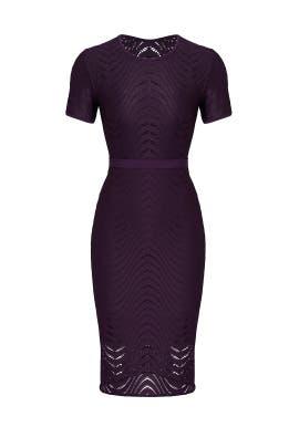 Purple Swirl Dress by CYNTHIA STEFFE