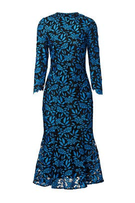 Black and Blue Floral Lace Dress by Shoshanna