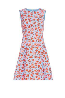 Printed A-Line Dress by Draper James