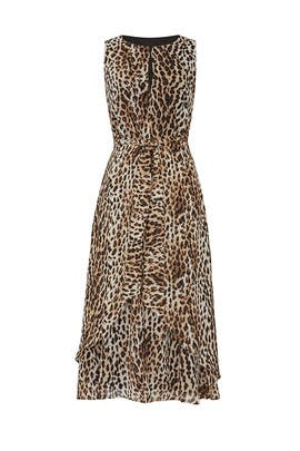 Leopard Printed Midi Dress by RACHEL ROY COLLECTION