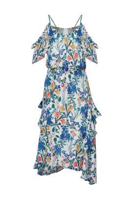 Floral Kam Dress by Parker