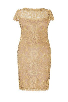 Gold Corded Embroidery Dress by Tadashi Shoji