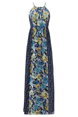 9a0d9d82a47 Annati Silk Maxi Dress by Joie for  70