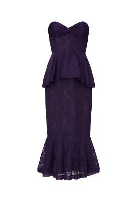 Strapless Lace Ashley Dress by flor et.al