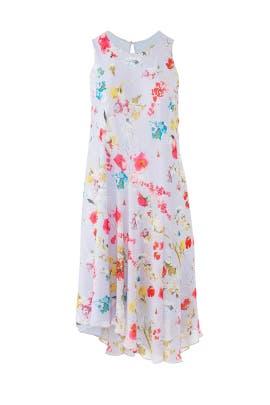 Flora Scarf Dress by Rachel Rachel Roy