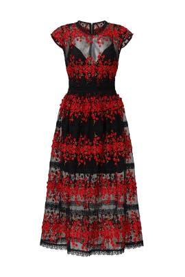 Gloria Midi Dress by Bronx and Banco